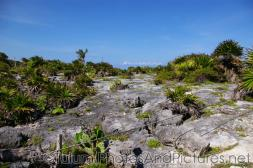 Rocky area at Tulum Ruins.jpg