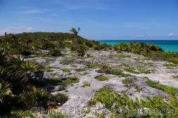 City in the distance as seen from Tulum Mayan Ruins.jpg